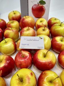 messe äpfel